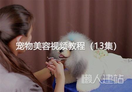 宠物美容视频教程(13集)百度云盘下载